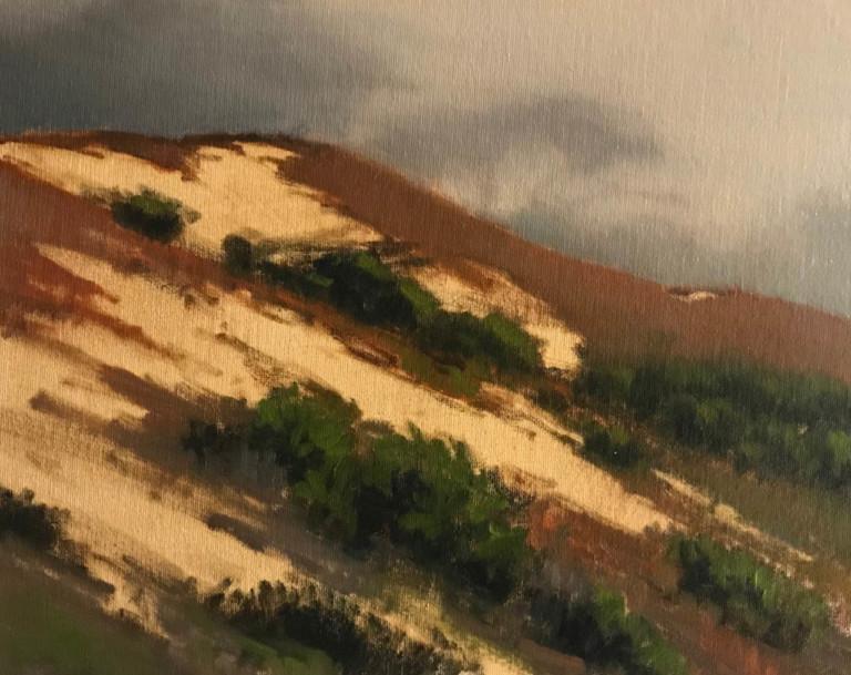 Foggy Dunes, by Brian Blood