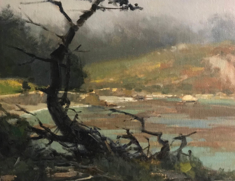 Misty Morning at Whalers Cove, by Brian Blood