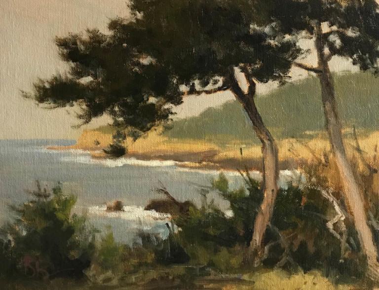 Pt Lobos Shores 1, by Brian Blood