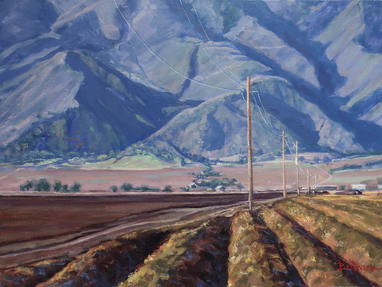 Valley Lines, by Carole Belliveau