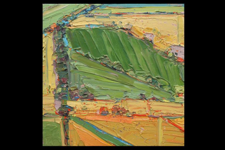 """""""Fields Verte Italiano"""" by Carolyn Meyer"""