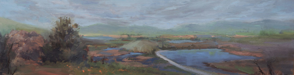 """""""Coyote Hills"""" by Sean Hsiao"""