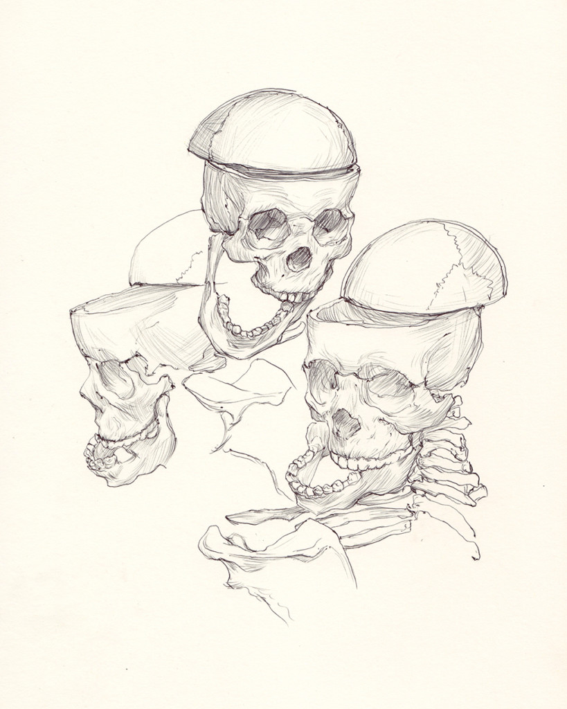 """Split Skulls"" by Edmund He"